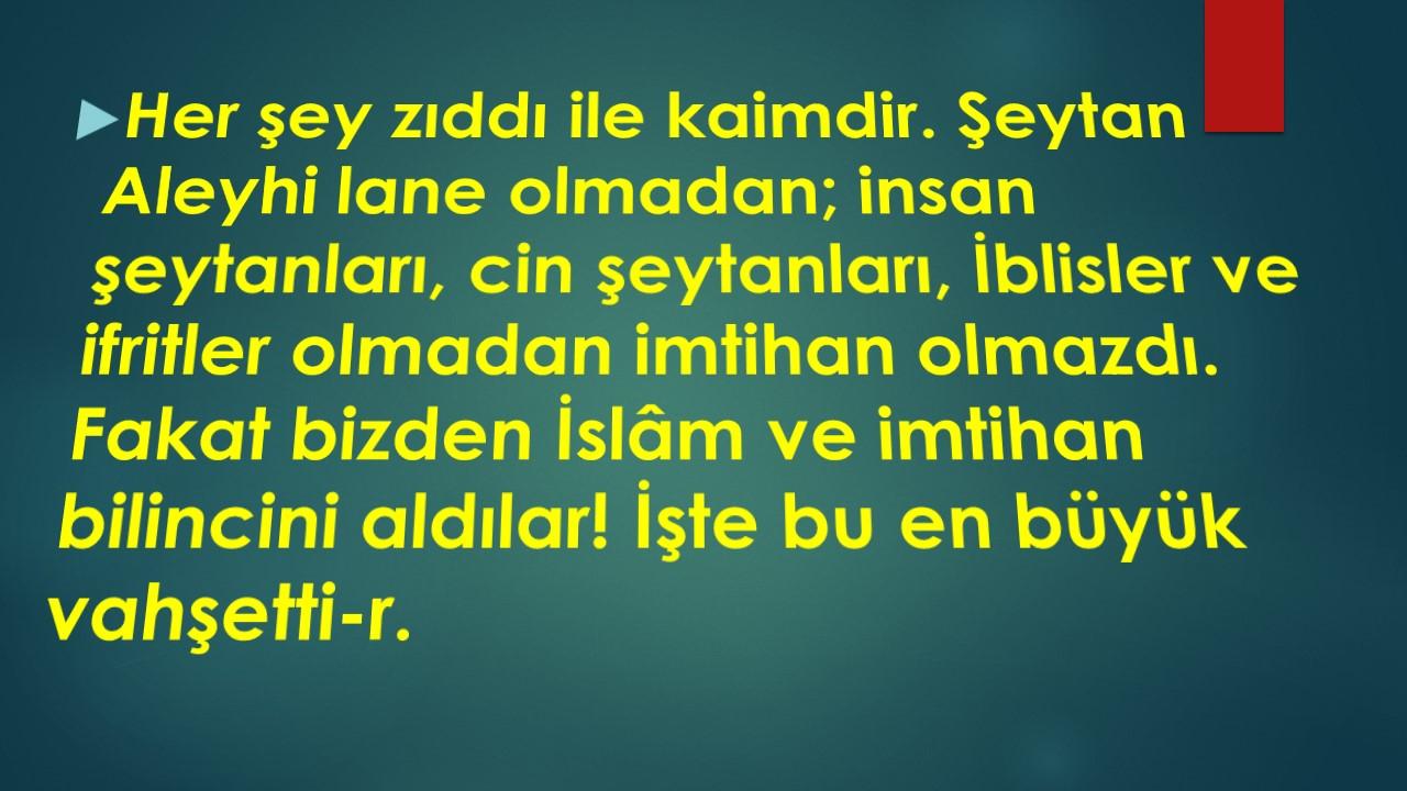 Slayt2